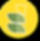 Logo do Parque Ecológico Fazenda Mãe Tereza
