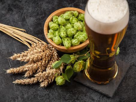 La birra non è più solo luppolo…