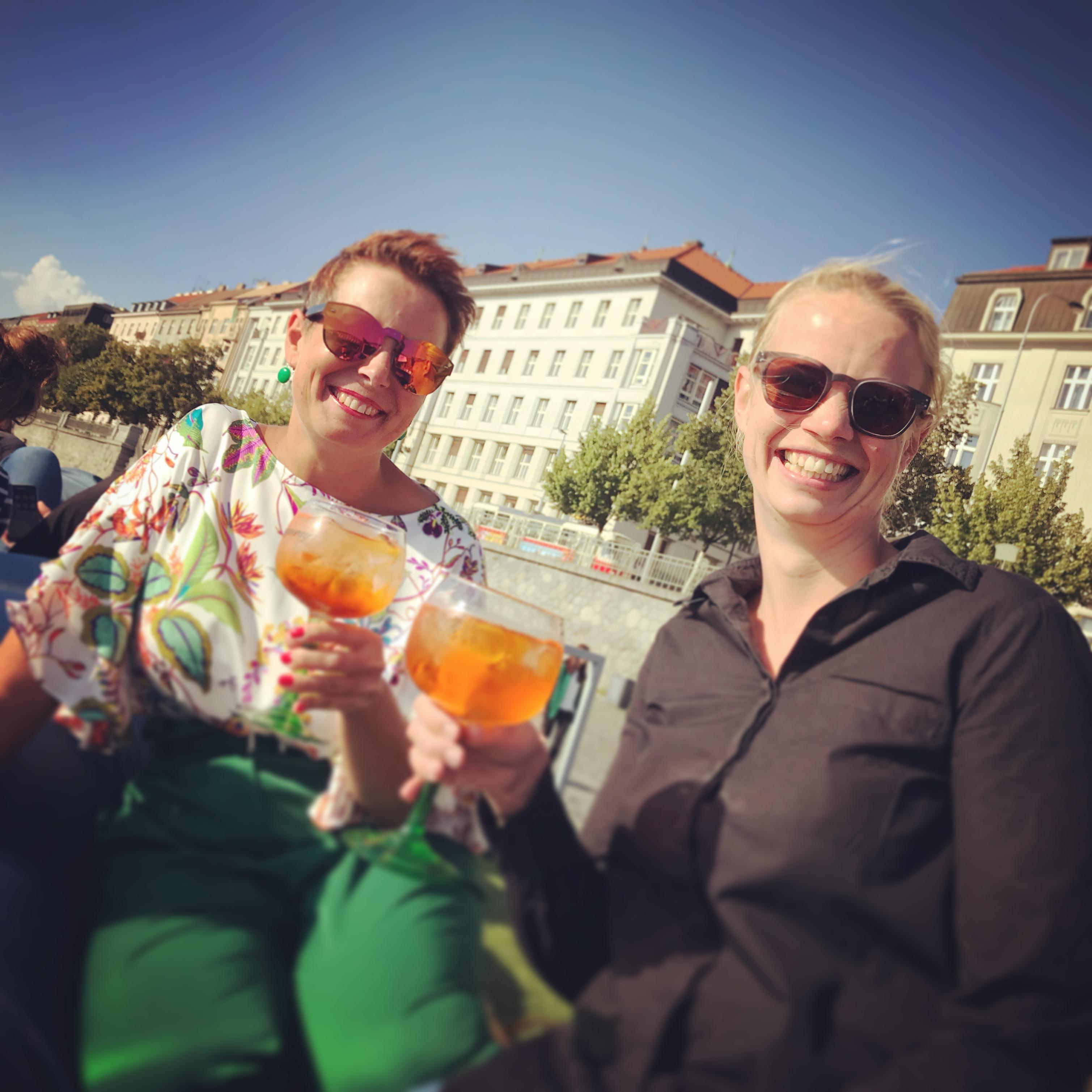 CIBCA Summer Drinks & Survey Results 201