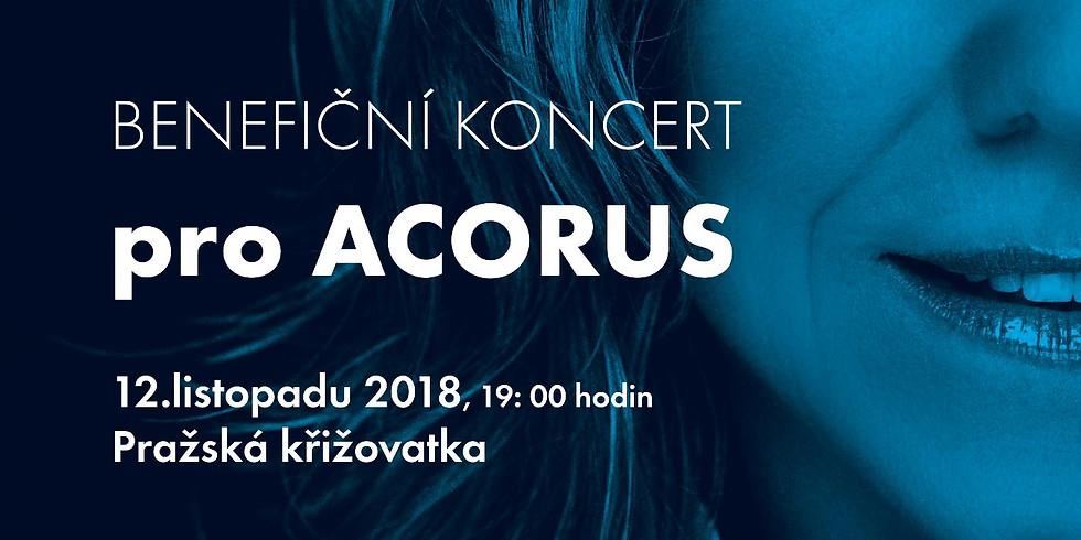 Lenka Filipova charity concert for ACORUS