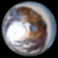 Redland (581d)