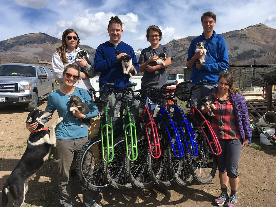 Outdoor adventures with sled dogs in Durango, CO