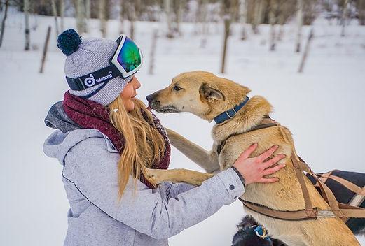 doggie kiss.jpg