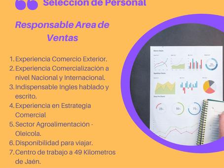 Selección de Personal: Responsable Gestión Comercial.