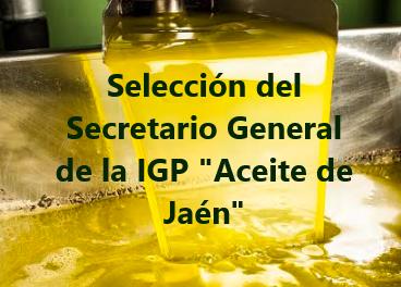 """Perfil de selección Secretario/a General IGP """"Aceite de Jaén"""""""