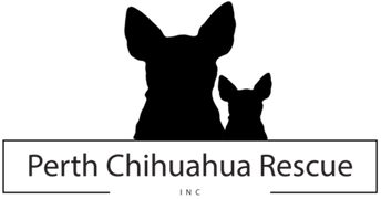 perth-chihuahua-rescue-inc.png