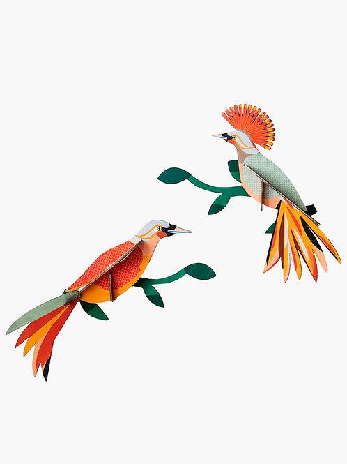 décoration murale paradise bird, obi STUDIO ROOF