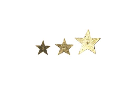 clou étoile BONCOEURS