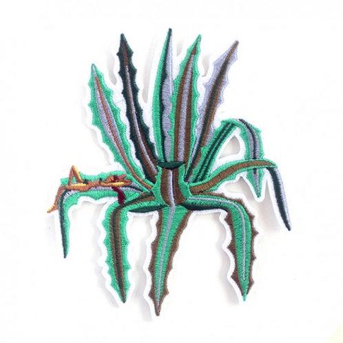 écusson cactus & femme MACON & LESQUOY