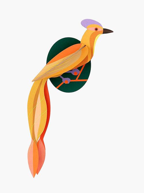 décoration murale oiseau de paradis olango STUDIO ROOF