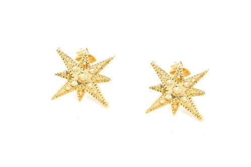 puces stella étoile LA2L
