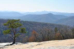Stone Mountain pic 2.jpg