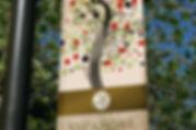 bannersycamore.jpg