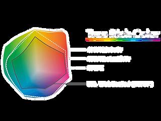 true_rich_color_2.png