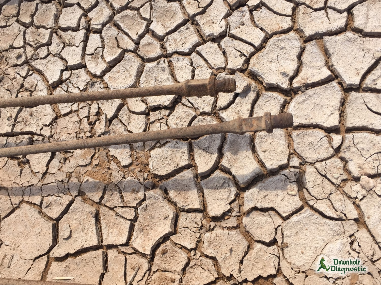 From Parched Land