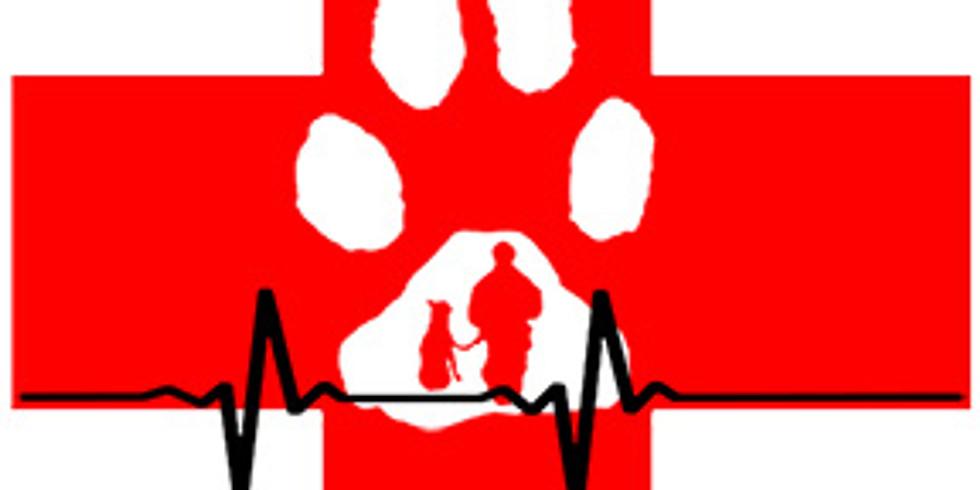 Basic Canine First Aid