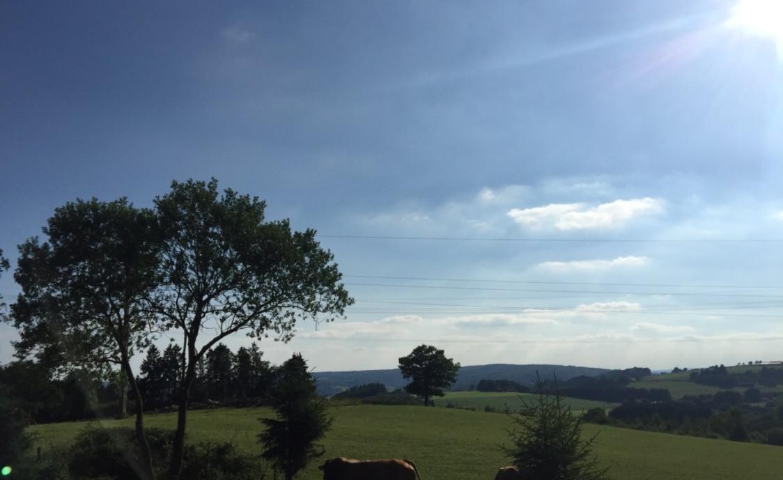 Uitzicht op de velden
