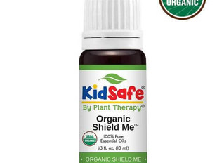 A Natural Bug Spray for You and Your Kids