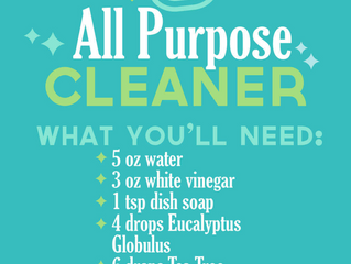 ALL PURPOSE DIY CLEANER