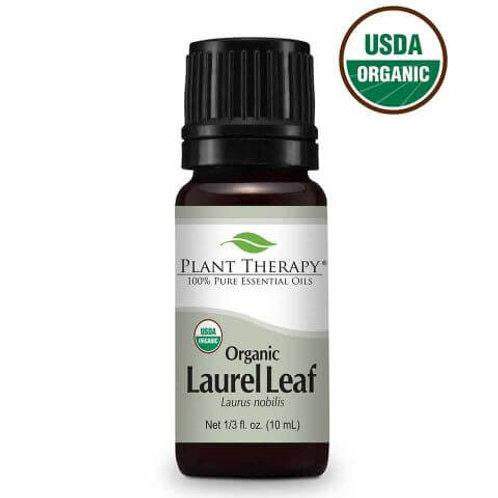 Laurel Leaf Organic Essential Oil
