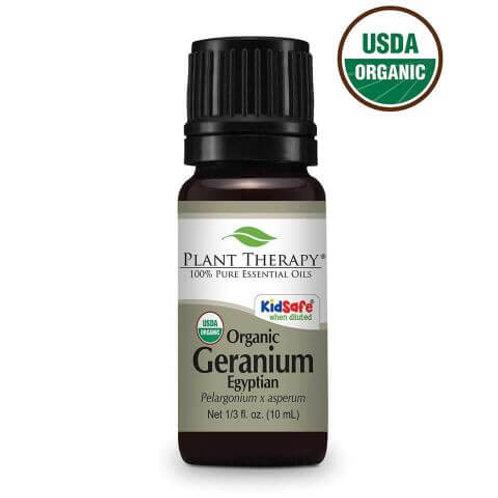 Geranium Egyptian Organic Essential Oil