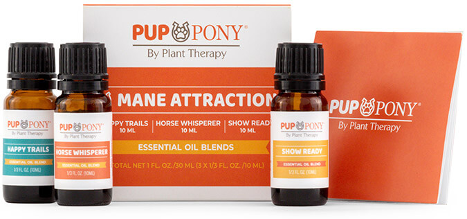 PlantTherapy-PupPony-ManeAttractionSet