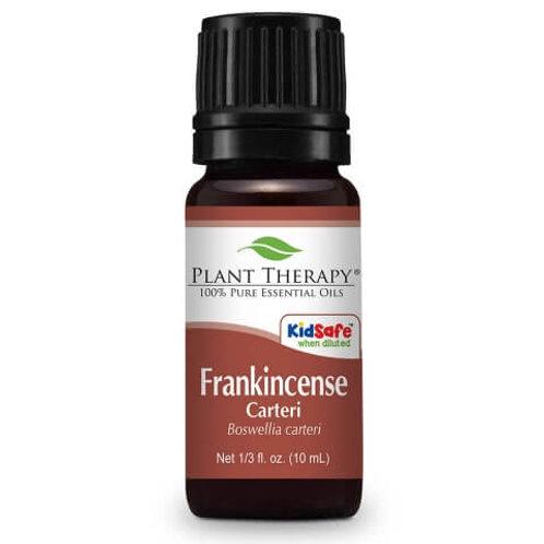 Frankincense Carteri Essential Oil