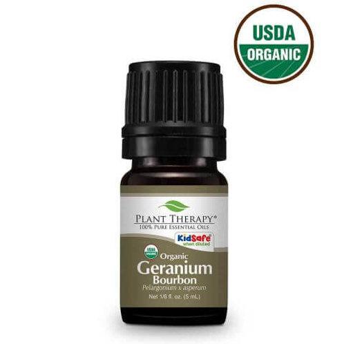 Geranium Bourbon Organic Essential Oil