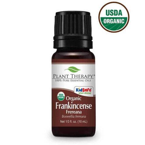 Frankincense Frereana Organic Essential Oil