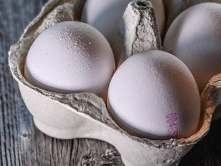Don't Forget About Calcium When Feeding Your Dog A Home-Prepared Diet OR Do Not Let Your Eggshel