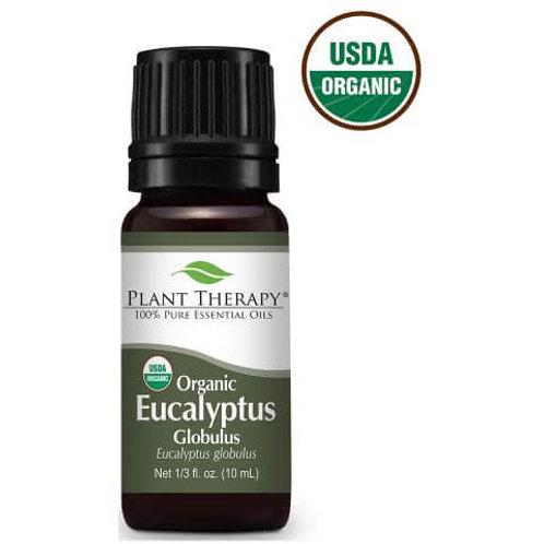 Eucalyptus Globulus Organic Essential Oil
