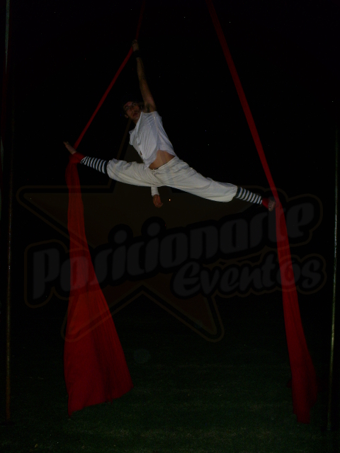 Danza Aérea