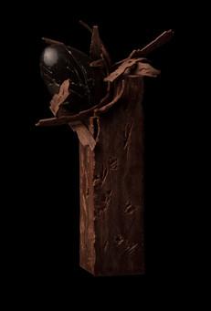 OLD TREE NEST (2013)