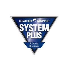 SYSTEM_PLUS_edited.png