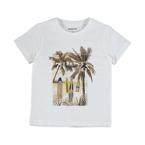 Tee-Shirt Vibes