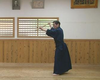 神道無想流杖術,杖術,有信館