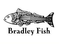Bradley Fish Music