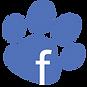 Page facebook de l'élevage de dalmatie du Royaume des lys d'Or