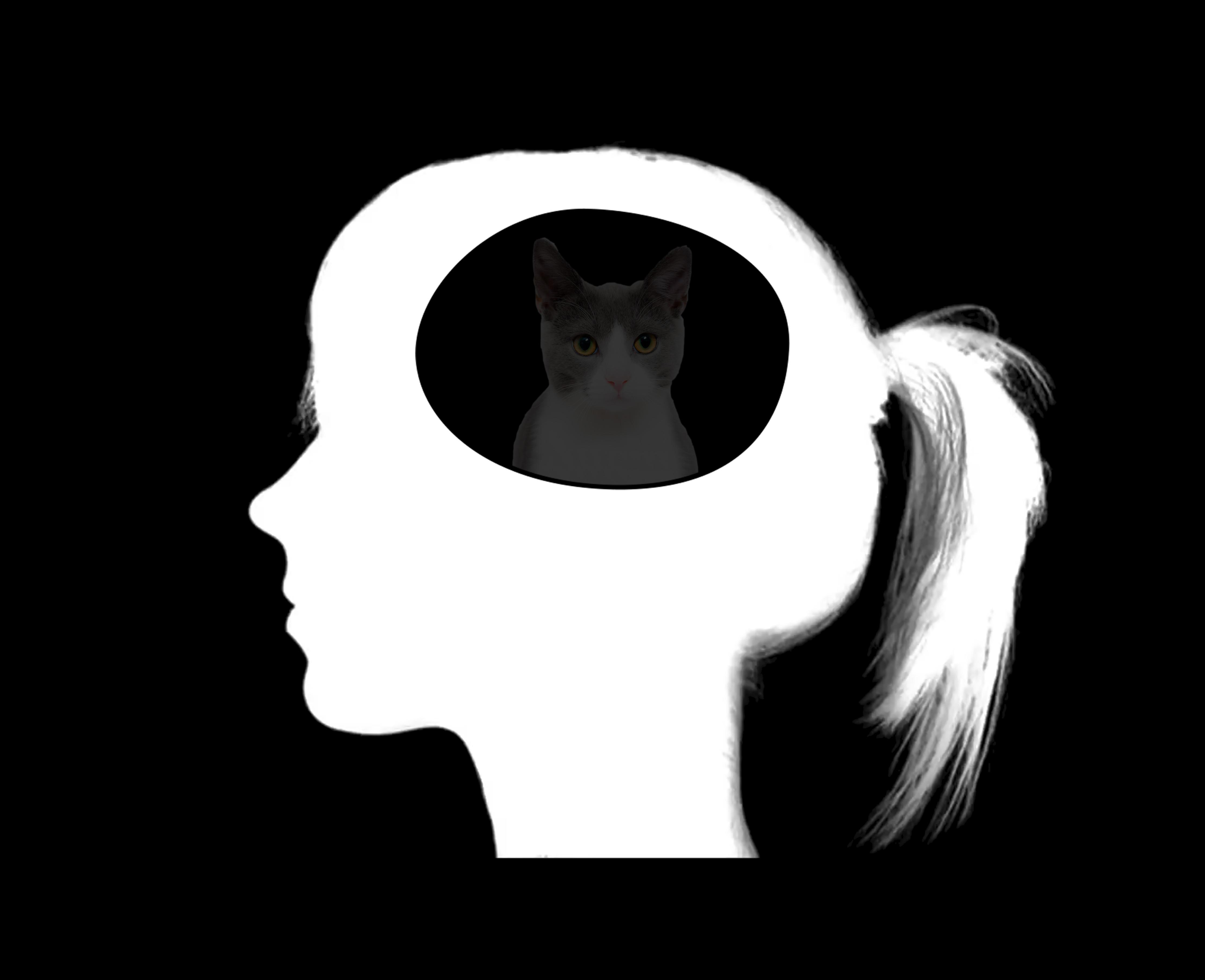 July // Mind's Eye Breakthrough Training