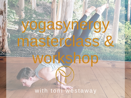 Yogasynergy masterclass & workshop