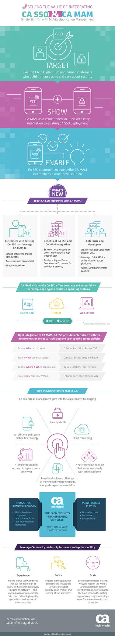 infographic_CA_internal_011615.jpg