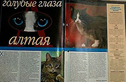 2004-altai-article.jpg