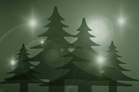 trees-1709176_1920.jpg