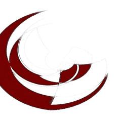 Circolarità - 2010