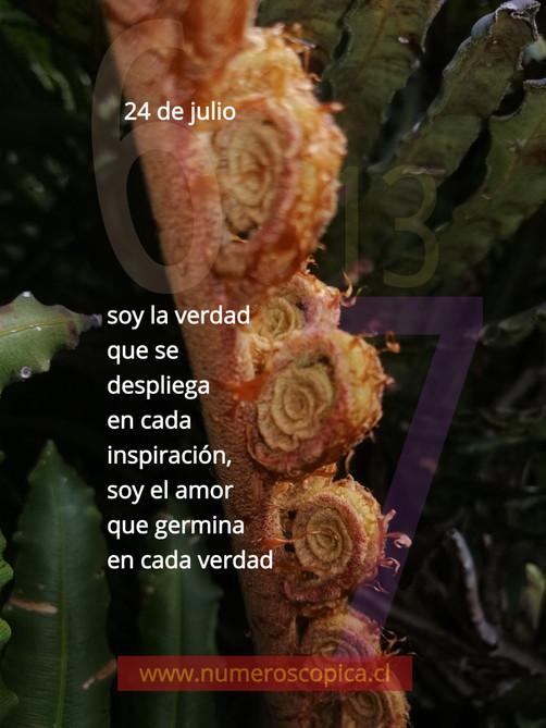 sábado 24 de julio