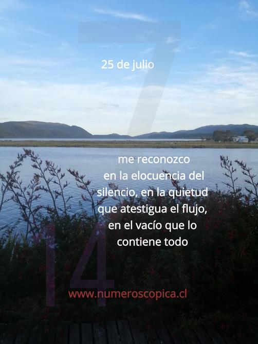 domingo 25 de julio