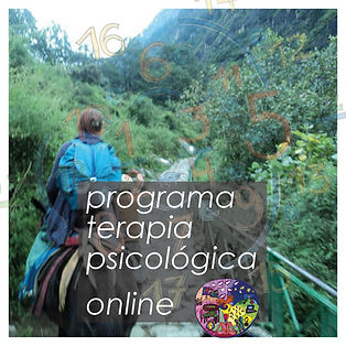 programa terapia psic online.jpg