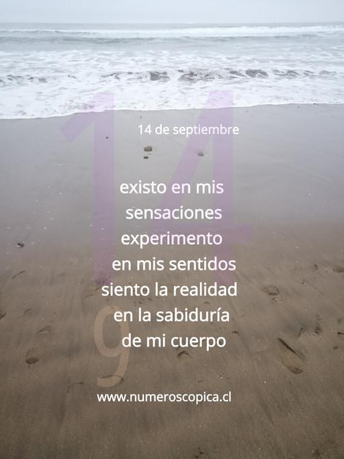 martes 14 de septiembre