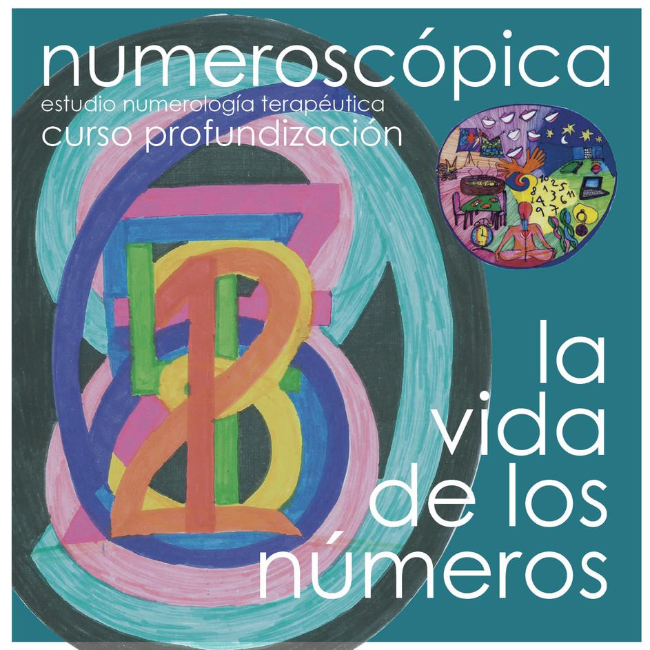 la vida de los números