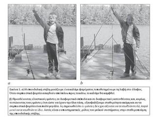 Core Stability Training: Η καλλιέργεια - γύμναση του πυρήνα.